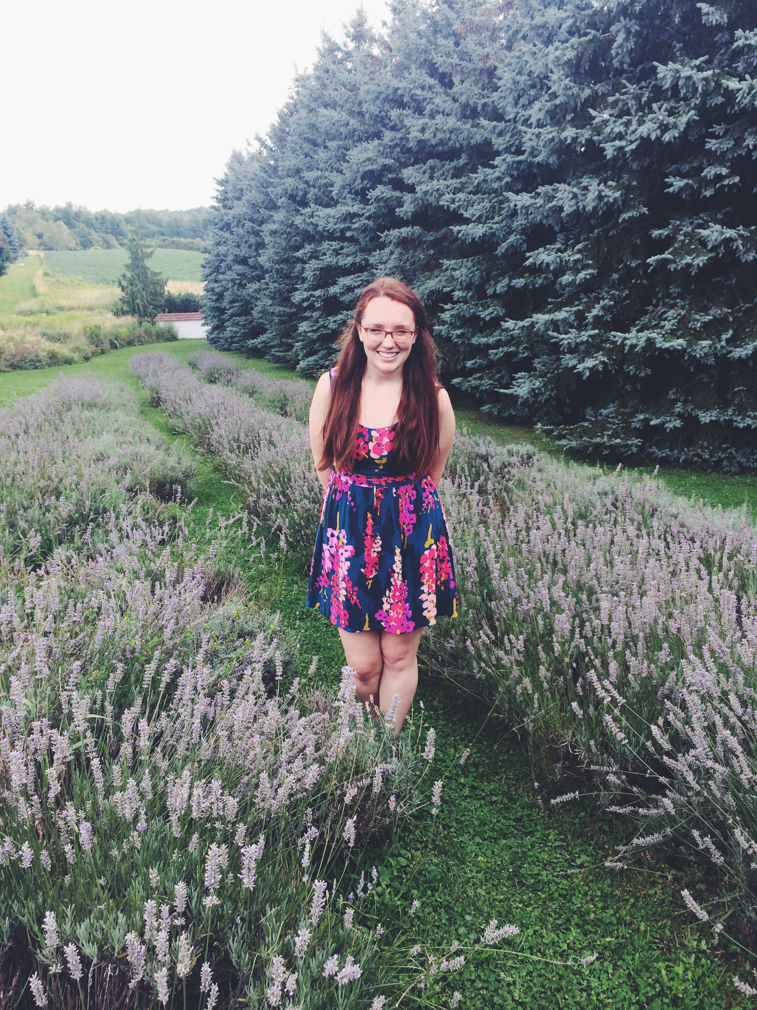 Frolicking in the lavender fields